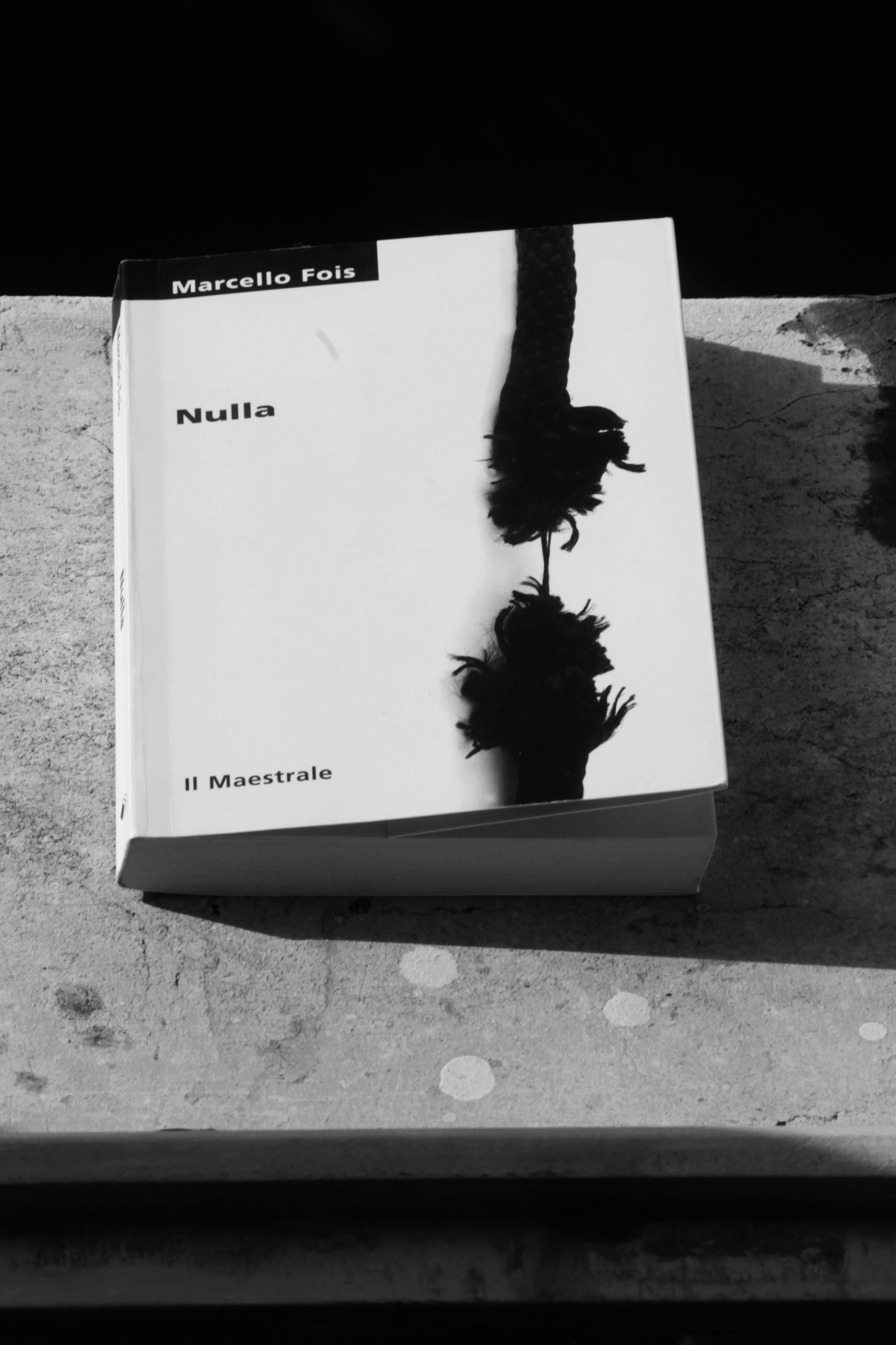 """Copertina di """"Nulla"""" di Marcello Fois. Foto di Francesca Leali © il fascino degli intellettuali"""